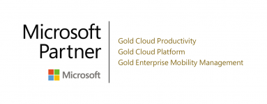MS Gold Partner